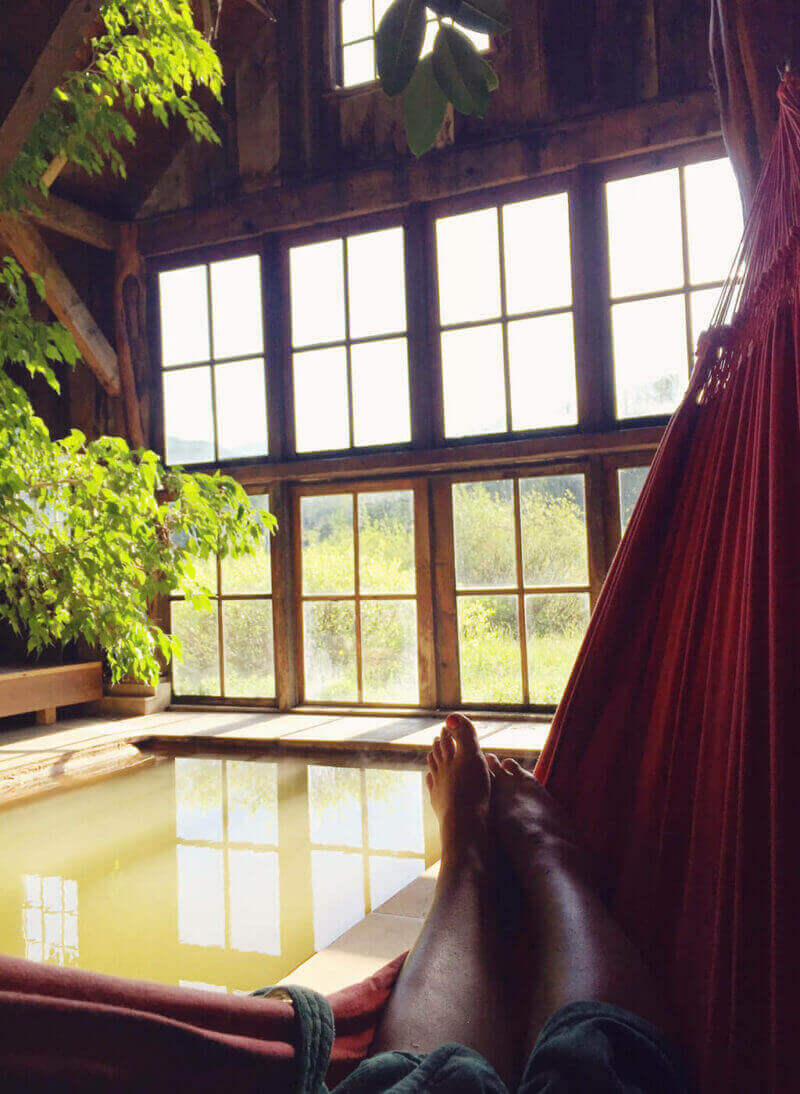 Views from my hammock