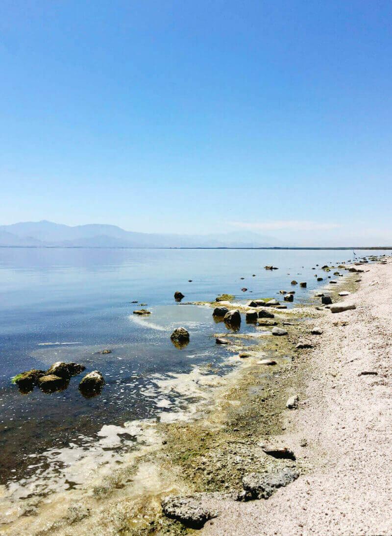 Salton Sea's polluted shores