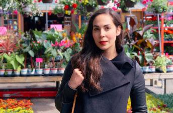 She's So Bright - The Flowers at Montréal's Marché Jean-Talon