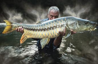 She's So Bright - You Need to Start Watching Jeremy Wade - If You Aren't Already