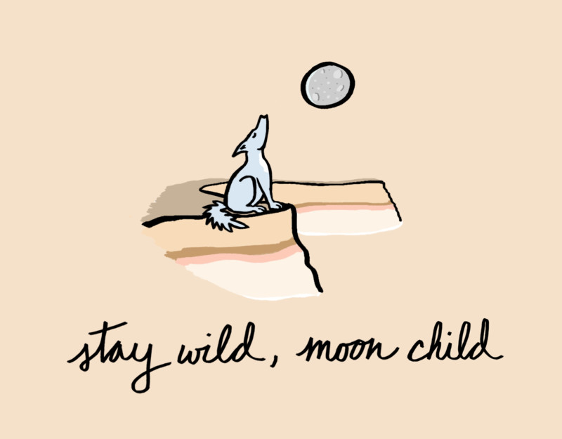 She's So Bright - What Does a Full Moon Mean to You? Coyote/Wolf howling at the moon. Stay wild, moon child.