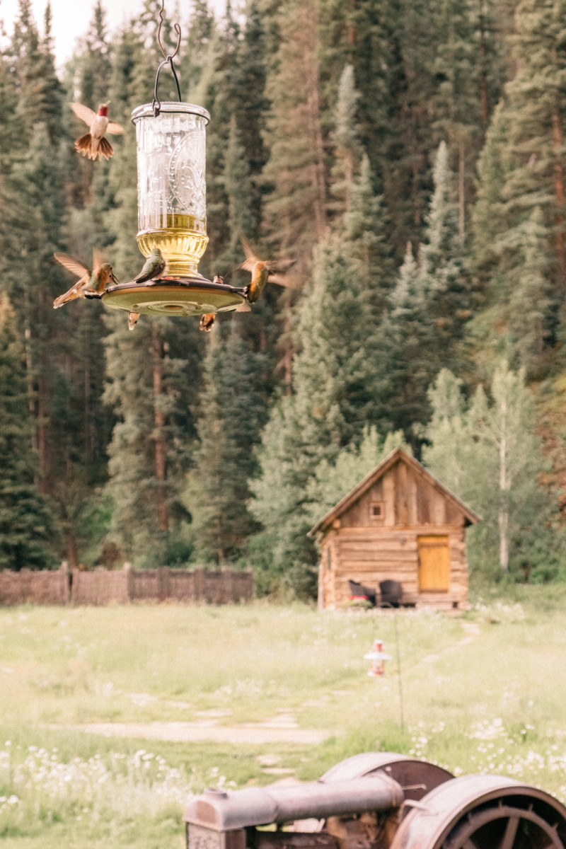 She's So Bright - Eva Goes West To Dunton Hot Springs, Telluride, Colorado, Travel, Old West, Log Cabin, Scenic, Travel Goals, Humming Birds