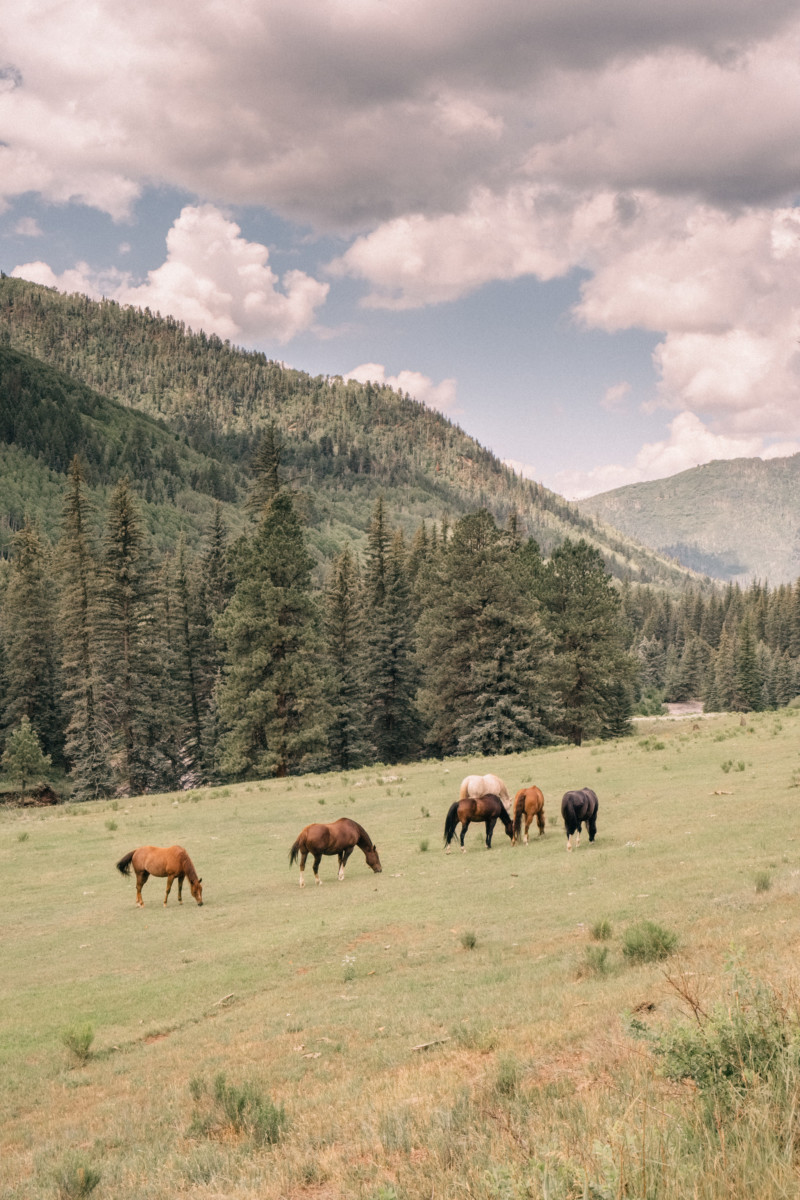She's So Bright - Eva Goes West To Dunton Hot Springs, Telluride, Colorado, Travel, Old West, Log Cabin, Scenic, Travel Goals, Horses, Mountains