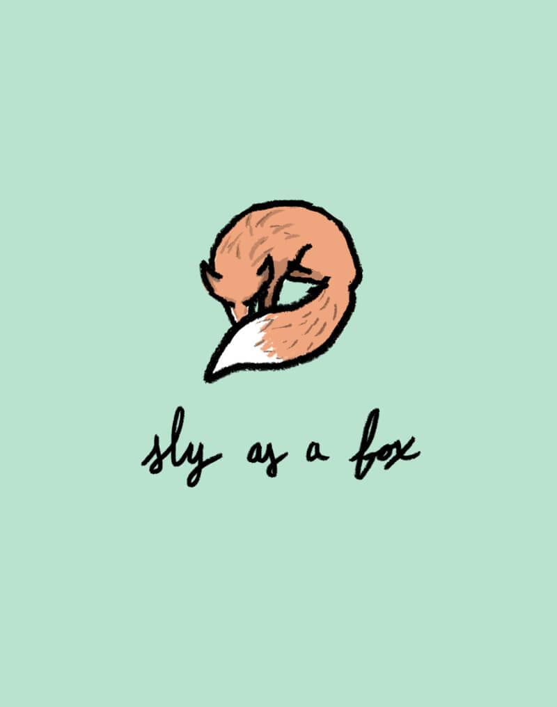 The Fox is My Spirit Animal - She's So Bright, Opinion, Thoughts, Illustration, Graphic, Drawing, Hand Drawn