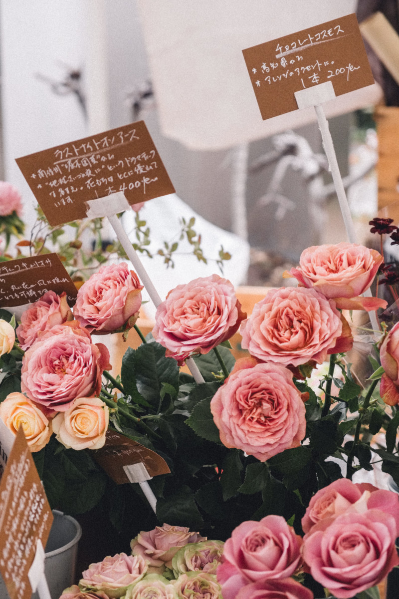 First Impressions of Tokyo - She's So Bright, Japan, City, Travel, Asia, Wanderlust, Photography, Fujifilm, Flowers. Farmers Market, Roses