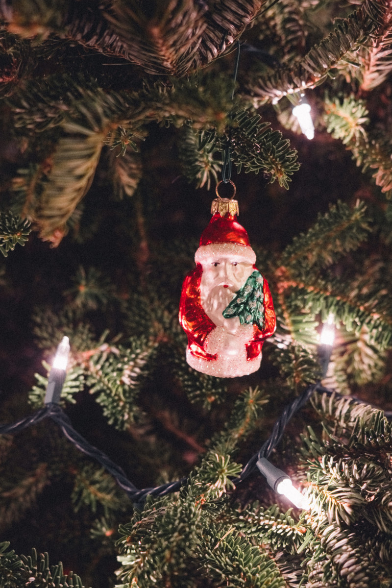 A Very Merry Christmas - She's So Bright, Holiday, Santa, Christmas, Festive, Photography, Christmas Tree
